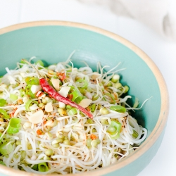 Asian Noodles with Bean Sprouts