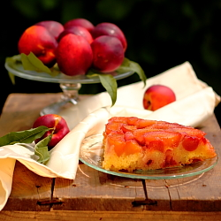 Cake with a Compote of Peaches