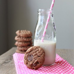 Chocolate PB Oatmeal Cookies