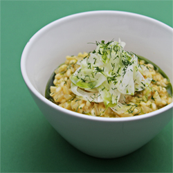 Fennel Risotto Recipe
