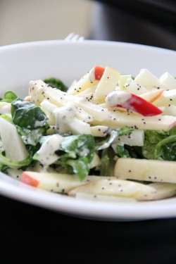 Kohlrabi Apple Mache and Mint Salad with Poppy Seed Dressing Recipe