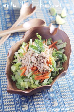 Larb Gai Thai Chicken Salad Recipe