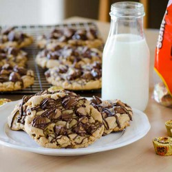 Reeces Peanut Butter Cookies Recipe