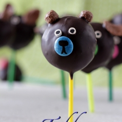 Animal Truffle Pops