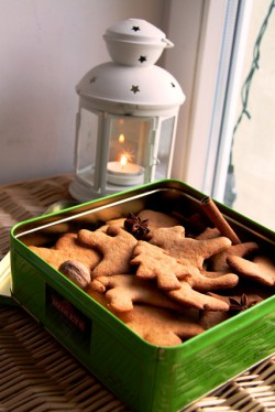 Aunt's Gingerbreads