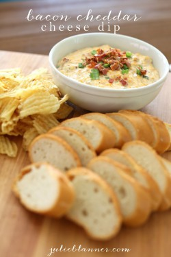 Bacon Cheddar Cheese Dip