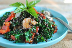 Black Quinoa with Shrimp