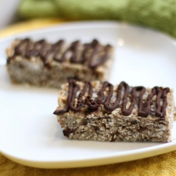 Coconut Chocolate Granola Bars