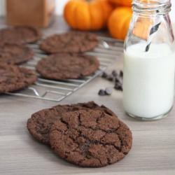 Double Chocolate Pumpkin Cookies
