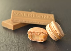 Dulcey Blond Chocolate Macarons
