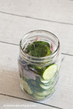 How to Pickle Anything in Five Minutes