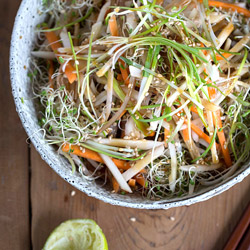 Jereusalem Artichoke Winter Slaw with Ponzu Dressing Recipe