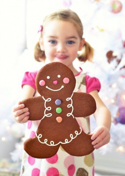 Jumbo Gingerbread Folk