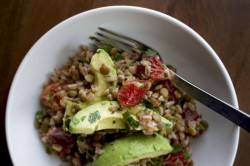 Lentil Avocado Grapefruit and Farro Salad Recipe