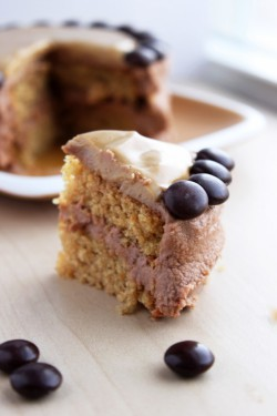 Mini Peanut Butter Nutella Cake