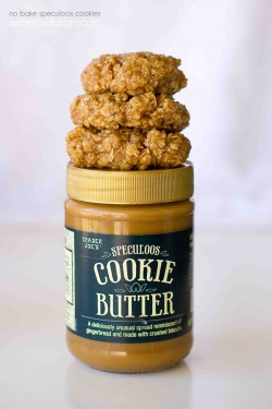 No Bake Speculoos Oatmeal Cookies