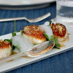 Scallops with Hazelnut