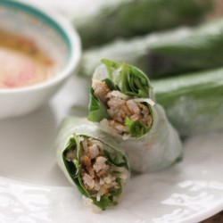 Shredded Pork Skin Spring Rolls