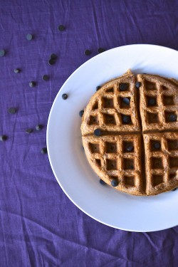 Skinny Chocolate Chip Waffles