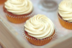 Spiced Maple Syrup Cupcakes