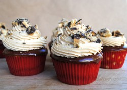 Tagalong Chocolate Peanut Butter Cupcakes Recipe