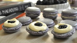 Blackberry White Chocolate Macarons