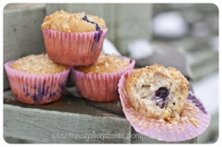 Blueberry, Coco and Choc Muffins