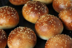 Burger Buns Recipe