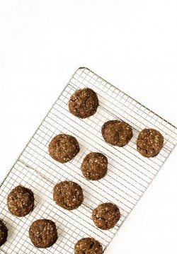 Chocolate Coconut Cookies Recipe