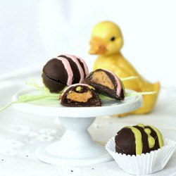 Chocolate covered Peanut Butter Egg