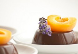 Chocolate Lavander Pannacotta