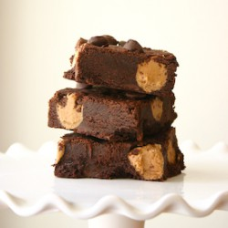 Cookie Butter Truffle Brownies