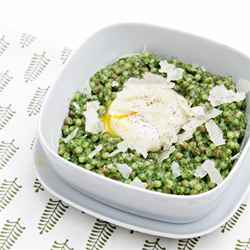 Fregola with Kale Pesto Poached Eggs and Pecorino Romano