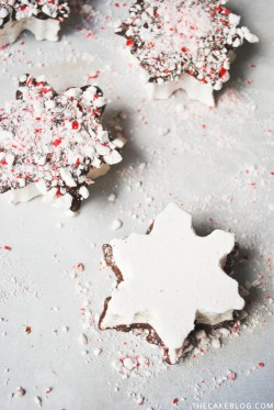 Homemade Chocolate Peppermint Marshmallows Recipe
