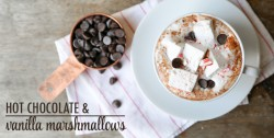 Hot Chocolate with Vanilla Marshmallows Recipe
