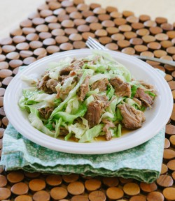 Kalua Pork Slow Cooker Recipe