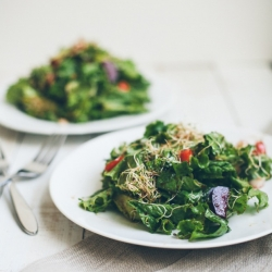 Leafy Sprout Salad with Sorghum Chili Vinaigrette Recipe