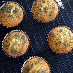 Lime and Poppy Seed Muffins