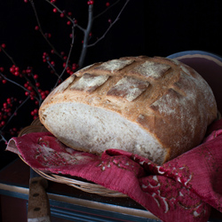 Rustic Bread Baked with Three Different Flours