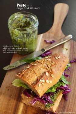 Sage and Walnut Pesto Recipe