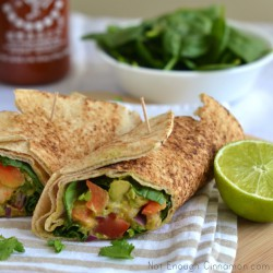 Shrimp Avocado Wraps