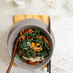 Vegetarian Soy Sauce Udon