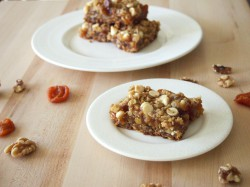 Apricot Oat Nut Bars