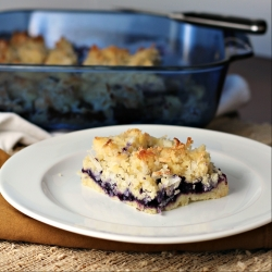 Blueberry Coconut Squares Recipe