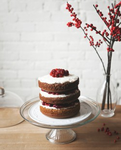 Gingerbread Cake with Cranberry Cream Recipe