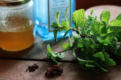 Honey Ginger Lemon Medicinal Tea Recipe