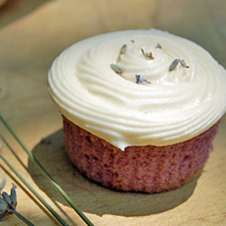 Lavender Cupcakes w/ Honey Frosting