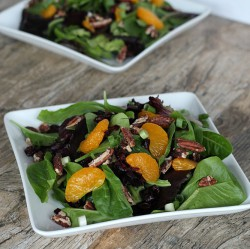Mandarin Orange Cranberry Salad