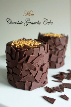 Mini Chocolate Ganache Cake Recipe
