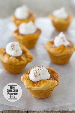 Mini Crescent Pumpkin Pies Recipe